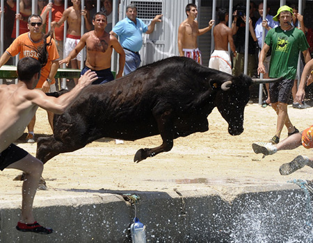 a bull charges man