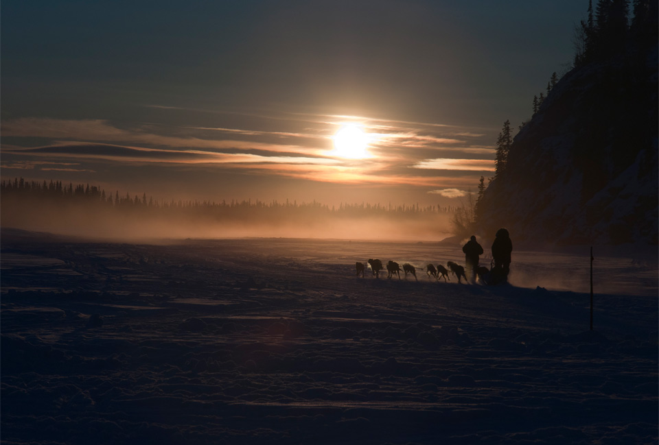 dog sledding into sunset