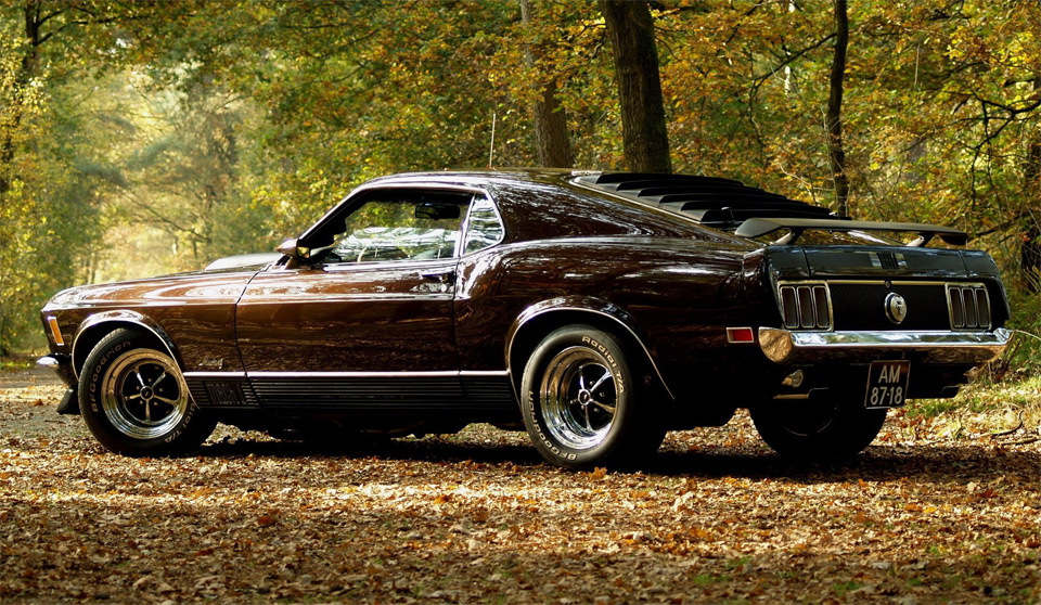 ford mustang at autumn
