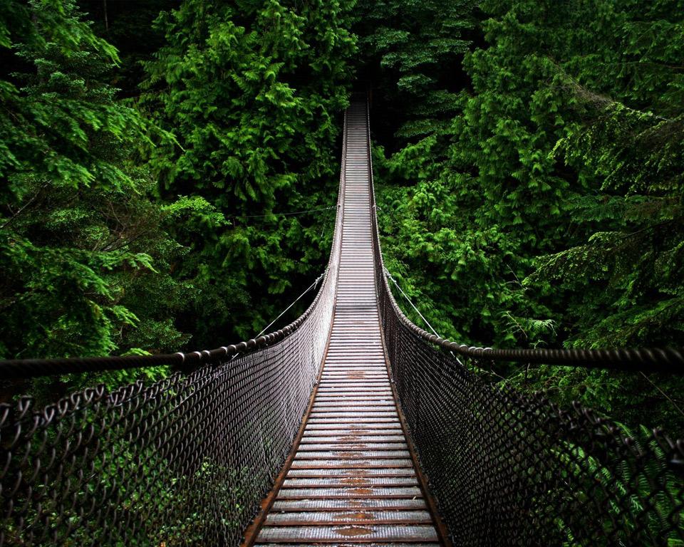 take this path