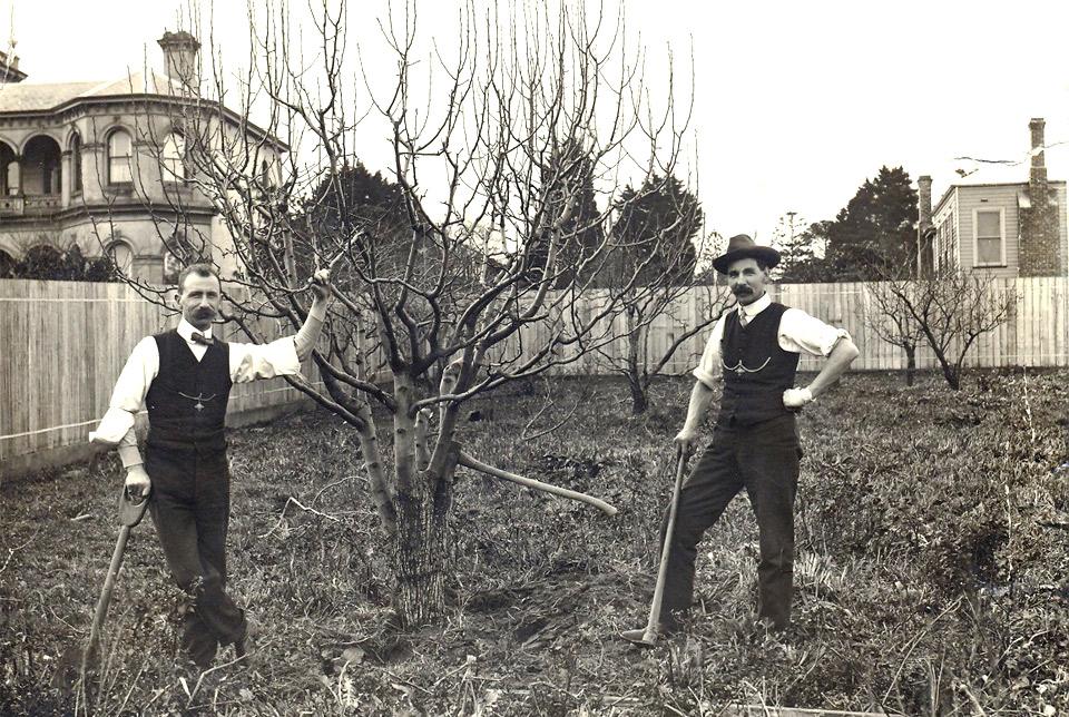 bad-ass gardening