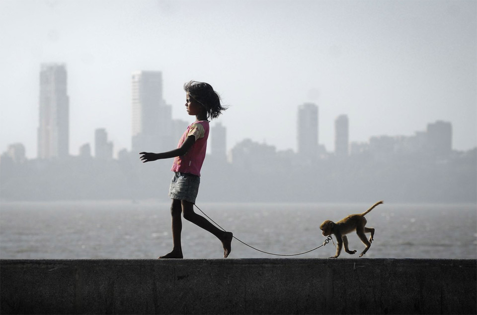 a girl, her monkey and mumbai