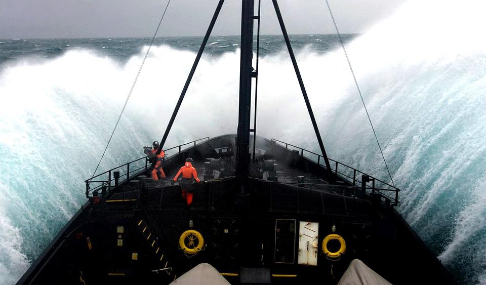 sea shepherd, scientific ship