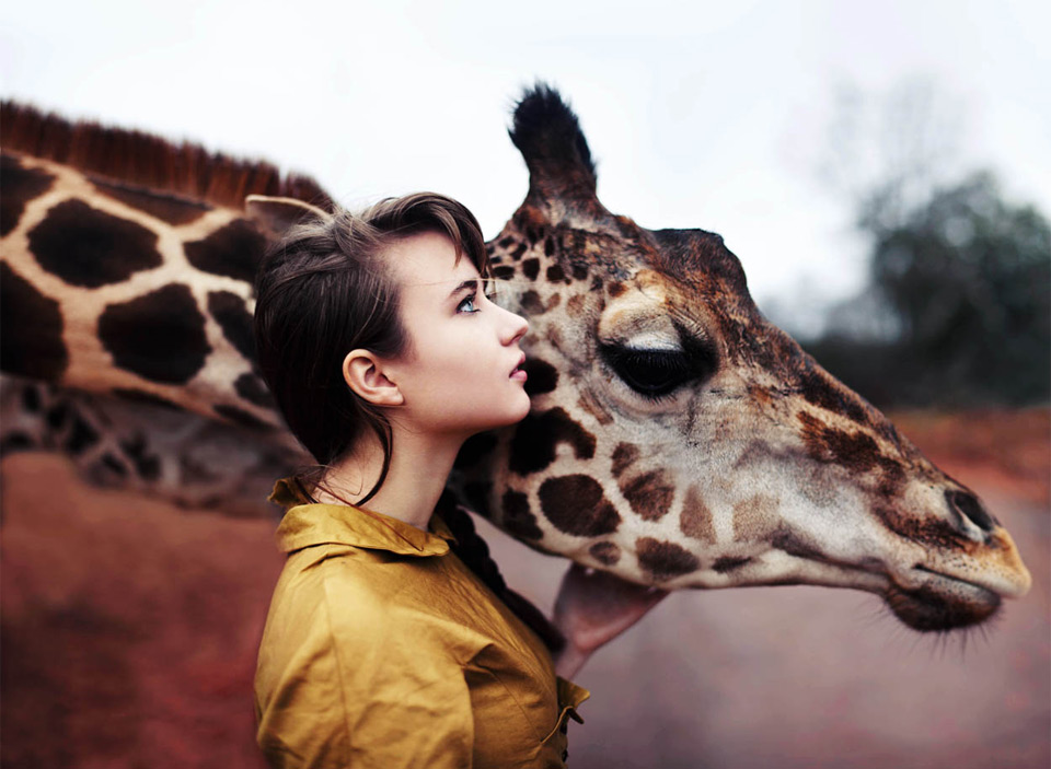 a girl and a giraffe