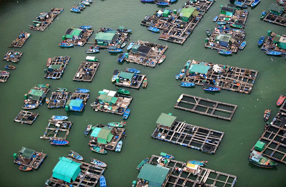 floating market, hong kong
