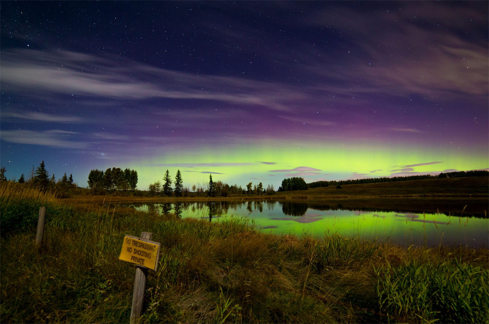 aurora borealis over lake in calgary
