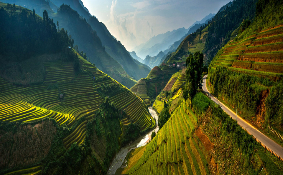 stunning rice terraces of northeast vietnam