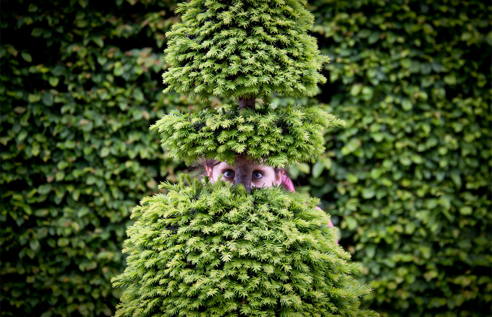 hide and seek, gardens of versailles, france