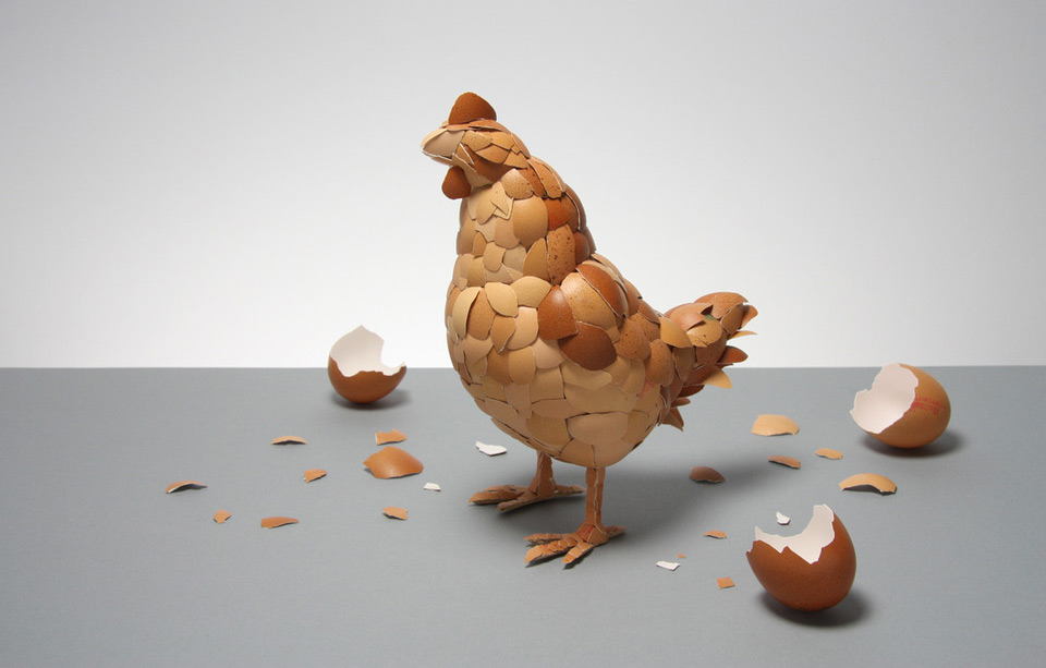 what came first? chicken or the egg – artwork