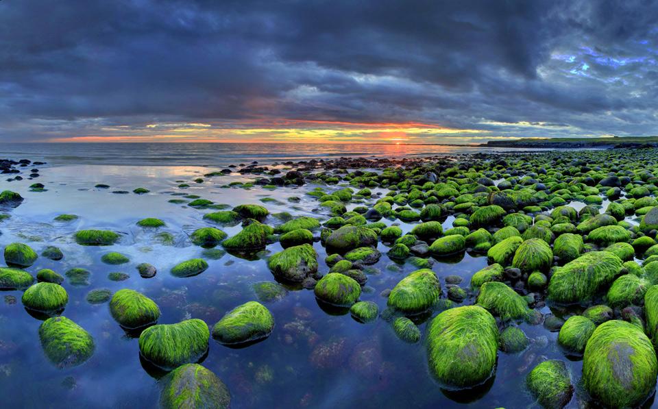 icelandic green rocks coast