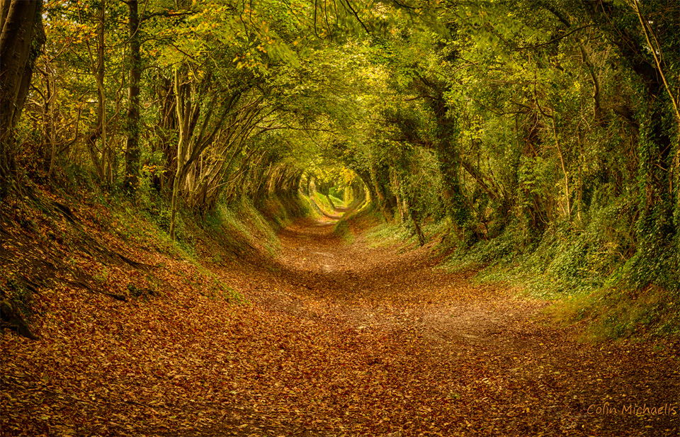 the tunnel near halnaker, england