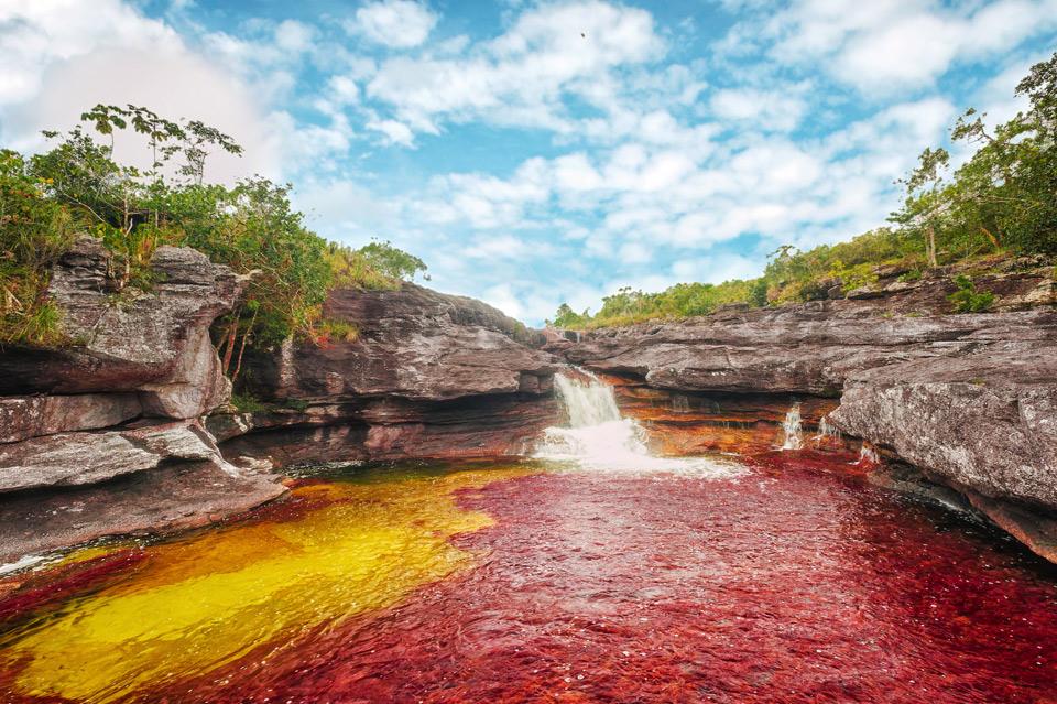 cano cristales river, colombia