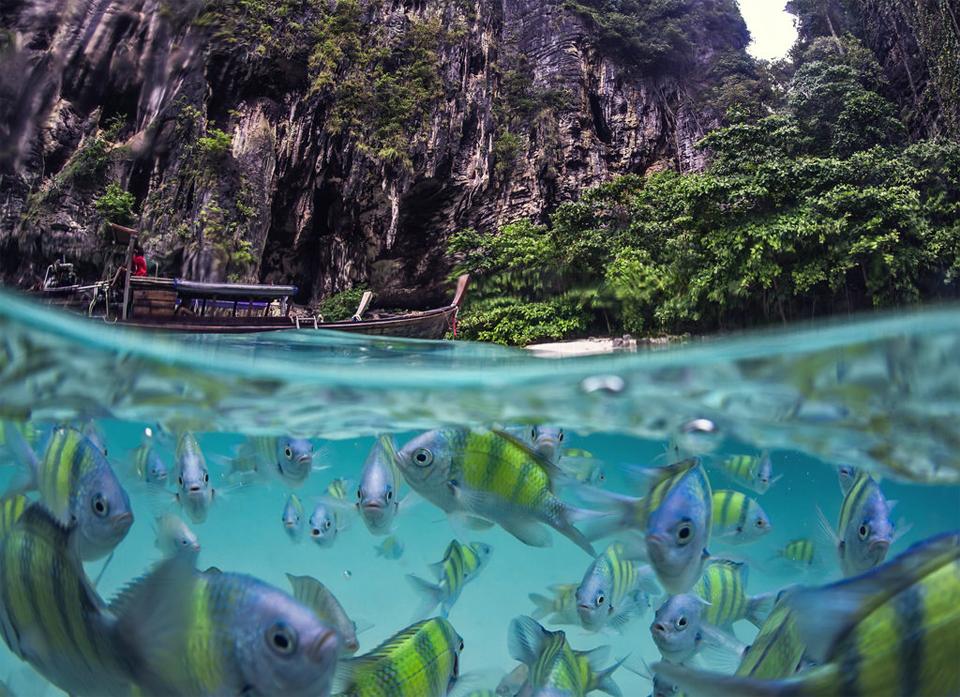 underwater life of poda island, thailand