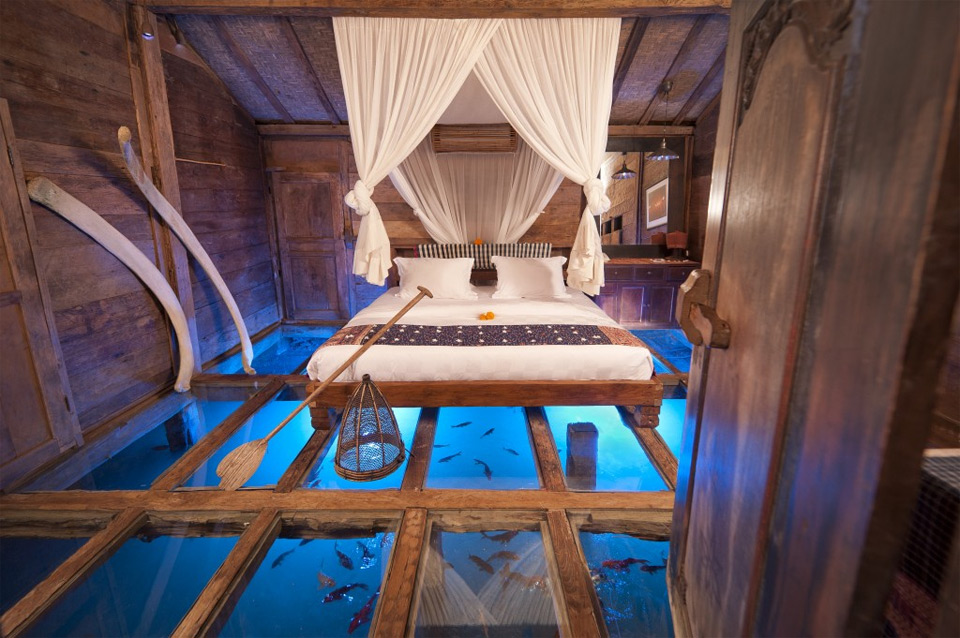 amazing room with glass floor shows underwater world photo | one