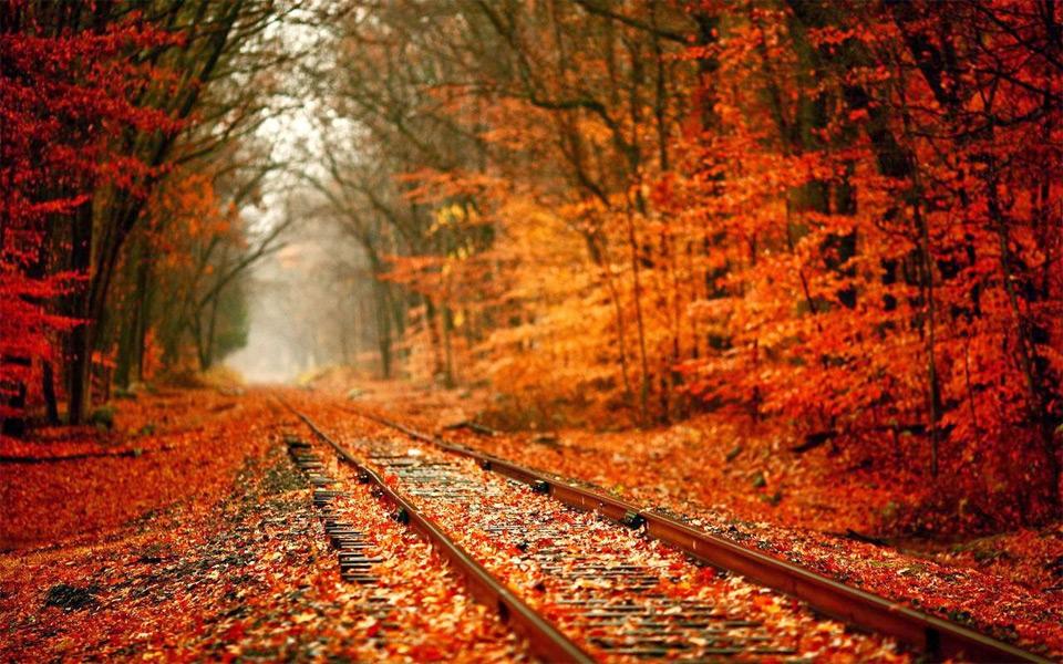 railway in autumn