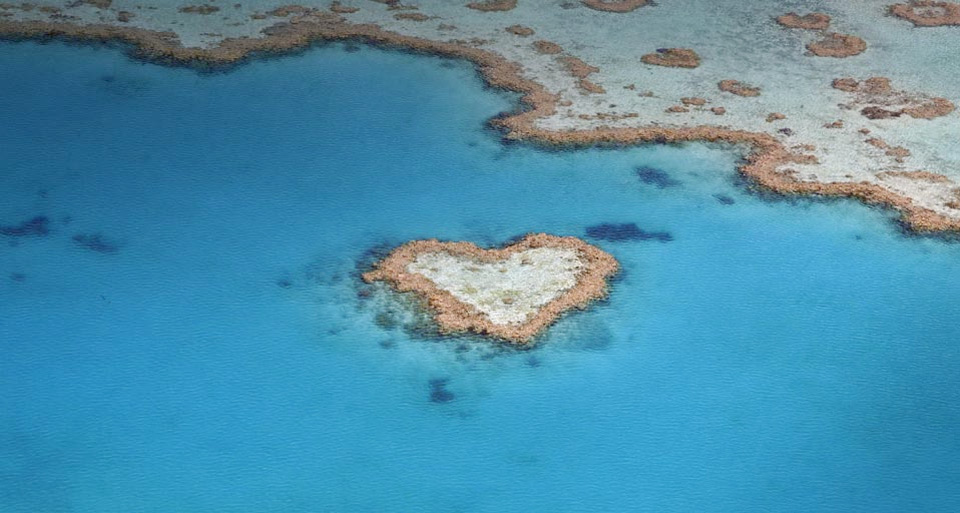heart shaped coral reef, australia