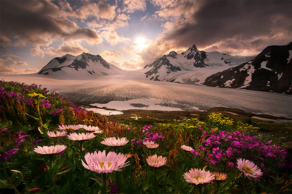 Amazing Photos of Wildly Beautiful Alaska