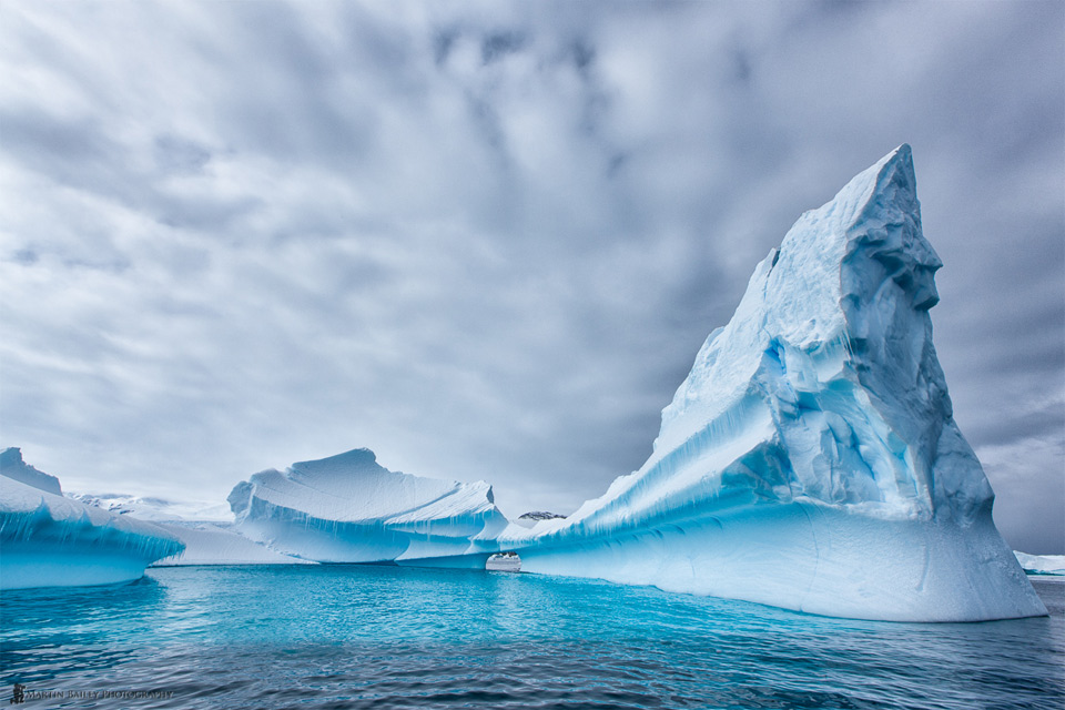 Incredible Antarctica
