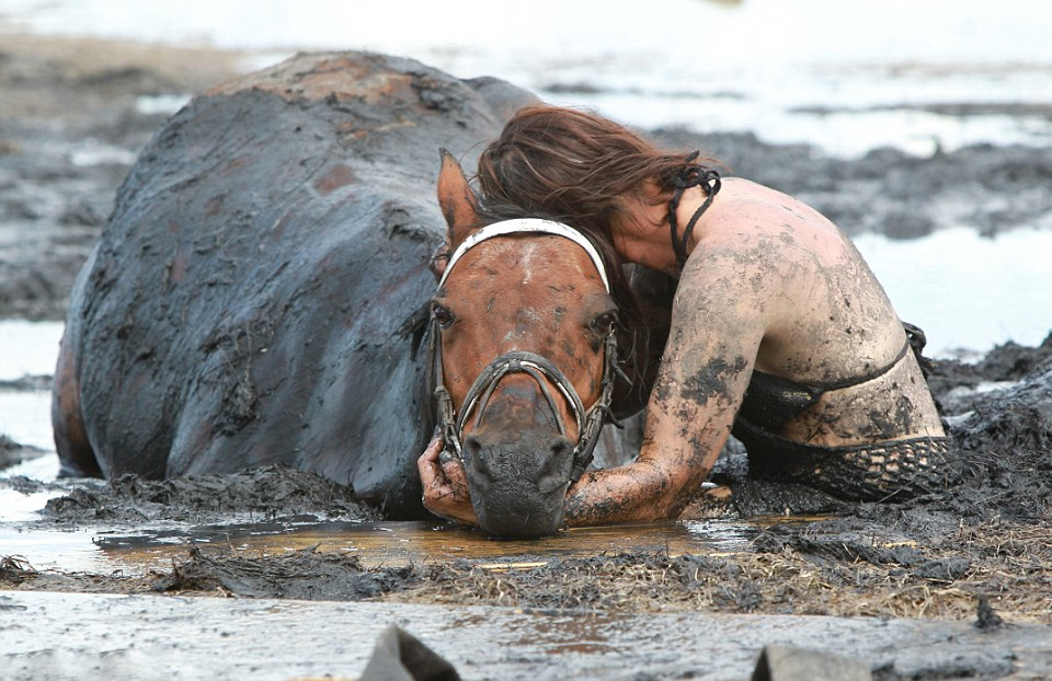 Staying By Horse Side After Getting Trapped in Mud