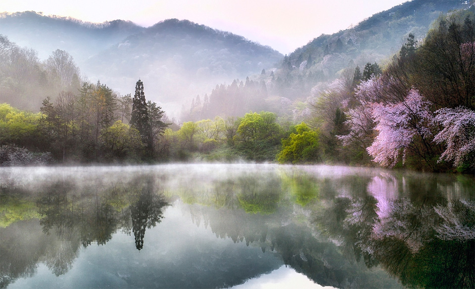 Spring In South Korea
