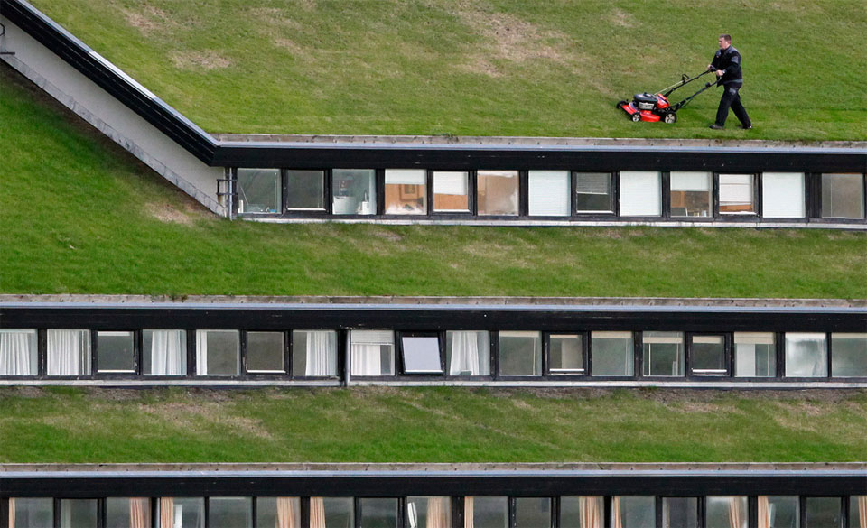 Mowing The Grass On Roof Of A Building, Faroe Islands