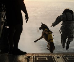 dog and soldier jumping out of helicopter