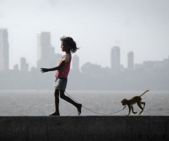 a girl, her monkey and mumbai