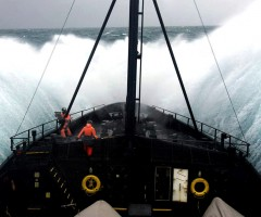 sea shepherd, scientific ship