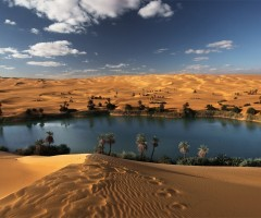desert oasis, libya