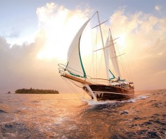 sailing through maldives