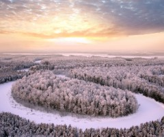 beautiful winter harmony