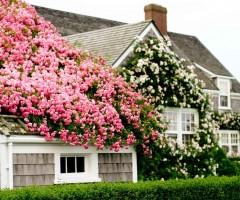 nantucket island house