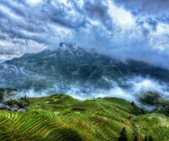 rice terraces, gaungxi province, china