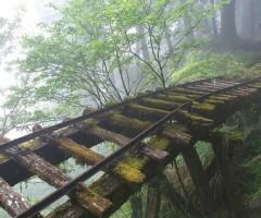 abandoned rail bridge in taiwan