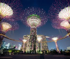 solar powered supertrees, singapore