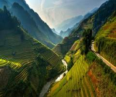 stunning rice terraces of northeast vietnam