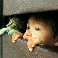 adorable photo of a child and a cat