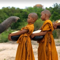 elephant welcoming buddhist monk kids
