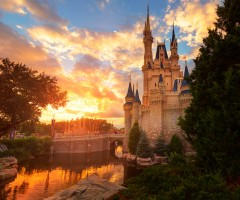 magic kingdom, disney world