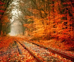 railway in autumn