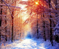 early winter morning