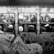 1981 new york subway