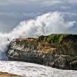 surfer cliff jump