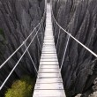 rope bridge madagascar