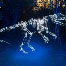 light graffiti dinosaurs