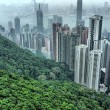 the hills of hong kong