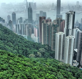 the hills of hong kong