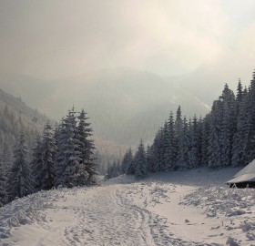winter paradise cabin