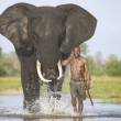 mahout with african elephant