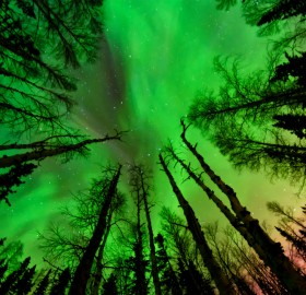 green sky of alaska